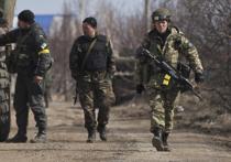 Украинская армия понесла серьезные потери в секторе «М»