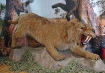 Выставка динозавров в Твери застряла в доисторической эпохе