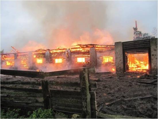 В Пеновском районе сгорела ферма