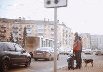 Разуй глаза: в Твери сшибать людей на улице позволено немногим